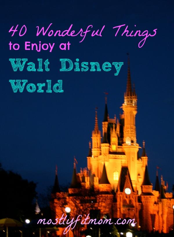 40 Wonderful Things to Enjoy at Walt Disney World